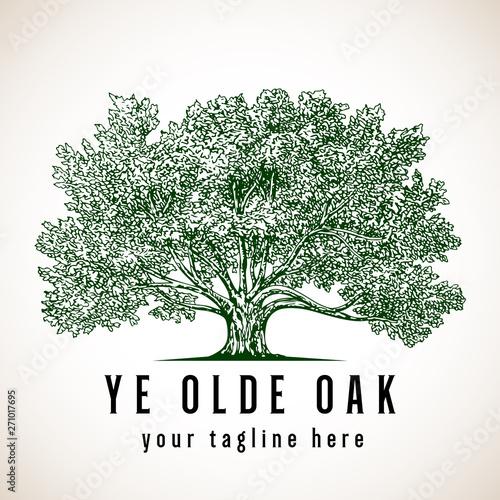 Tree Logo Canvas Print