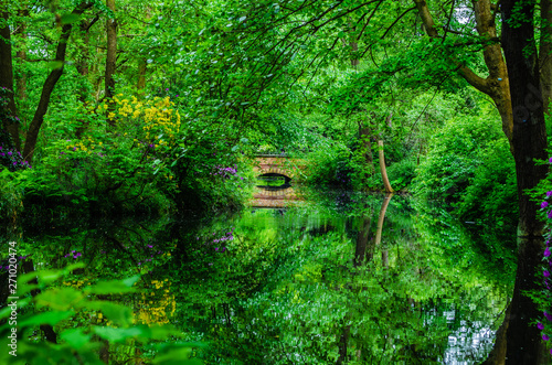 Foto op Plexiglas Groene water tree reflection park Berlin