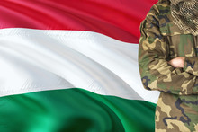 Crossed Arms Hungarian Soldier...