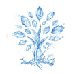 canvas print picture - abstract tree made of water splashes isolated on white background