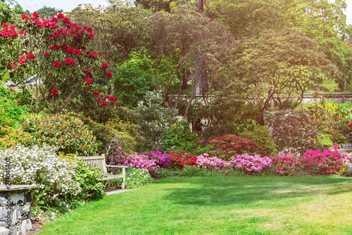 Printed kitchen splashbacks Garden Beautiful Garden with blooming trees during spring time, Wales, UK