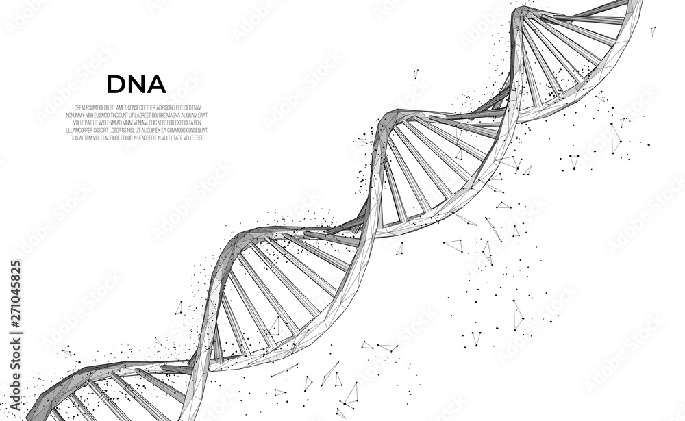 Fototapeta DNA. Abstract 3d polygonal wireframe DNA molecule. Medical science, genetic biotechnology, chemistry biology, gene cell concept vector illustration or background. innovation technology concept