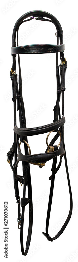 Fototapeta Leather bridle in black with a double capsule on a white background