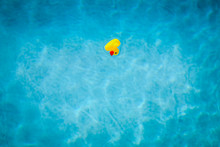 A Rubber Duck Upturned And Floating On A Swimming Pool - Dead In The Water