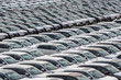 canvas print picture - Row of new cars for sale in port