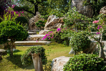 Luxury Landscape Design Of The Tropical Garden. Beautiful View Of Tropical Landscape