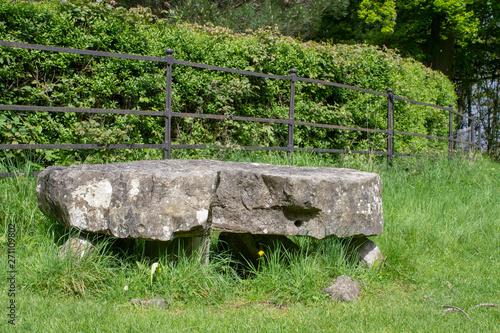 Leinwand Poster Knockmaree Dolmen in Phoenix Park, Dublin, Ireland