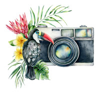 Watercolor Card Composition With Camera, Flower Bouquet An Toucan. Hand Painted Photographer Logo With Protea And Leaves Illustration Isolated On White Background. For Design, Prints Or Background.