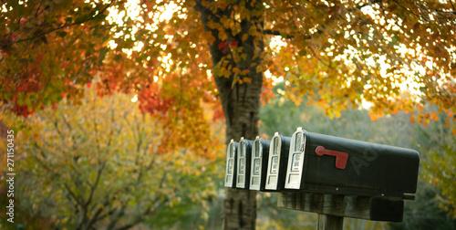 Fototapeta  Fall mailbox
