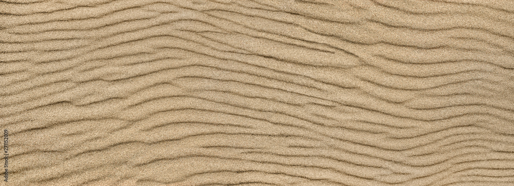 Fototapeta Sand ripple texture. Sandy background. Sand close-up.