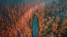 Aerial View Of Road In Mountains, Australia
