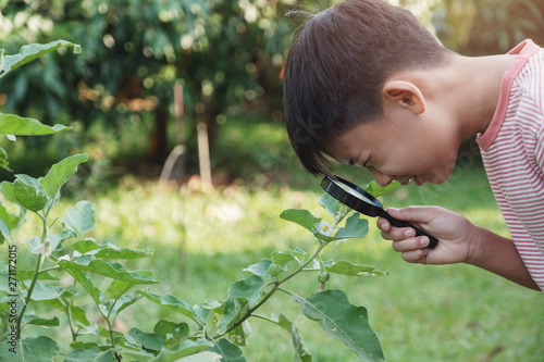 Fényképezés Tween Asian boy looking at leaves through a magnifying glass, montessori natural