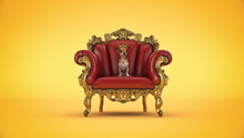 Dog WiDog With Crown In A Chair. 3d Rendering