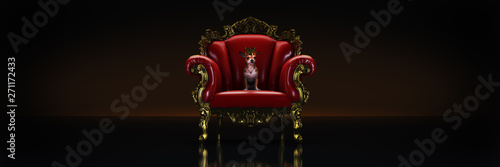 Dog with crown in a chair. 3d rendering Fotobehang