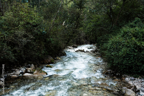 Printed kitchen splashbacks River River Running Over Rocks Peru South America With Thick Growth