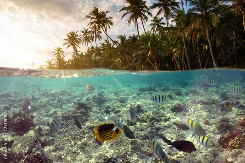 Underwater Scene With Reef ...