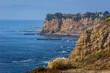 Stunning Golden Cove