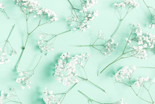 Flowers Composition. Gypsophila Flowers On Mint Green Background. Flat Lay, Top View