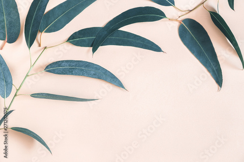 Eucalyptus leaves on pastel beige background. Frame made of eucalyptus branches. Flat lay, top view, copy space