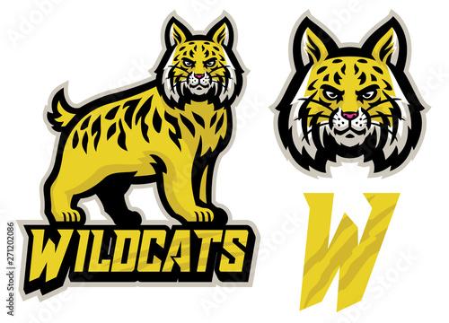 Vászonkép wildcats sport mascot set