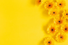 Flowers Composition. Yellow Ge...