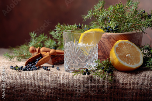 Tonic with lemon and a branch of juniper with berries. Canvas Print