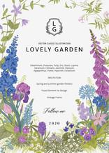Lovely Garden. Vector Invitation. Vintage Frame. Spring And Summer Garden Flowers