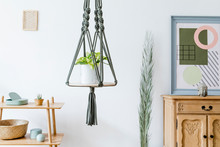 Stylish And Minimalistic Boho Interior With Design And Handmade Macrame Shelf Planter Hanger For Indoor Plants, Mock Up Poster Frame, Wooden Furnitures And Elegant Accessories. Cozy Home Decor.