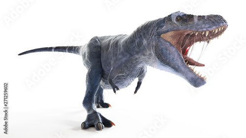 Fotografie, Obraz  3d rendered illustration of an isolated t-rex