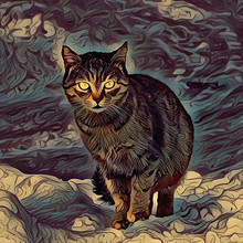 Outdoor Paintings. Digital Painting Authentic Mystical Cat