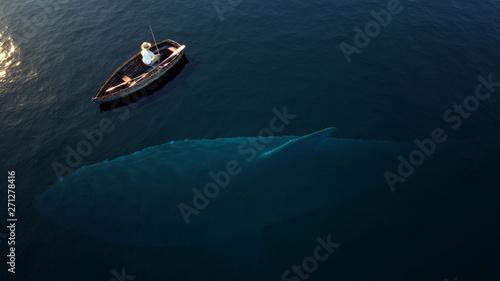 Fotografie, Obraz  Fishing, big shark underwater
