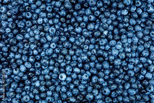 Draufsicht auf viele frische Heidelbeeren oder Blaubeeren, Hintergrund blau Fototapet