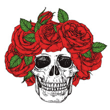 Hand Drawn Skull With Roses He...
