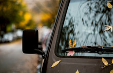 Autumn Leaves On The Hood Of A Van.