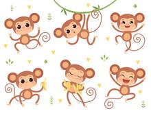 Cute Monkeys. Jungle Wild Anim...