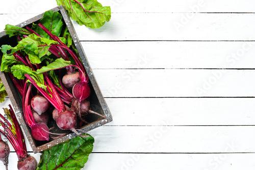 Obraz na plátně  Fresh beet on a white wooden background