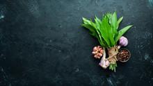 Fresh Wild Garlic Leaves On Bl...