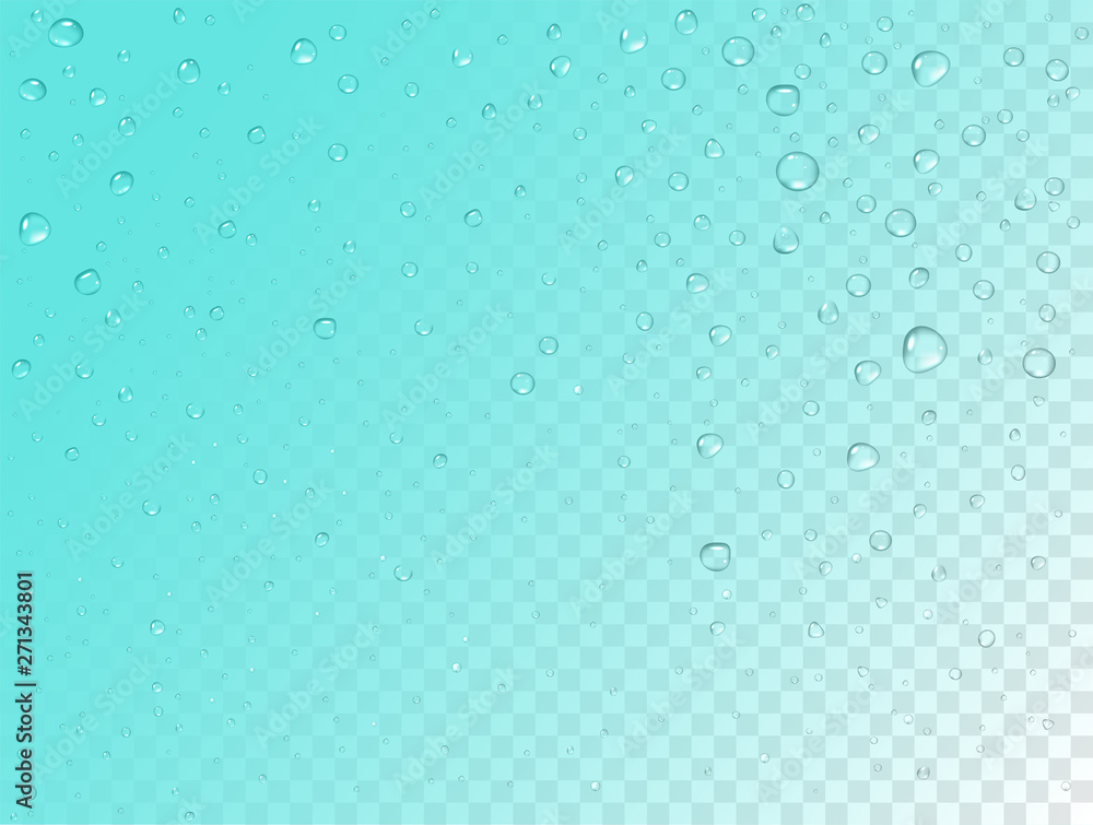Fototapety, obrazy: Vector rain pattern on transparent background. Pure realistic water drops on window glass surface