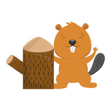 Beaver And Tree Stump On White Background