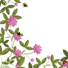 Corner Border Of Clover Leaves, Flowers And Bumblebees, Empty Floral Frame On A White Background. Vector Composition.