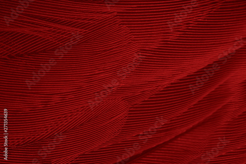 Beautiful red feather pattern texture background  - 271354639
