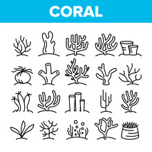 Corals Reefs And Seaweed Vecto...