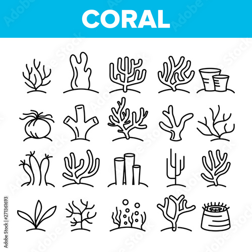 Obraz na płótnie Corals Reefs And Seaweed Vector Linear Icons Set