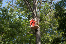 Small House For Birds. Birdhouse. Wooden Handmade Birdhouse.