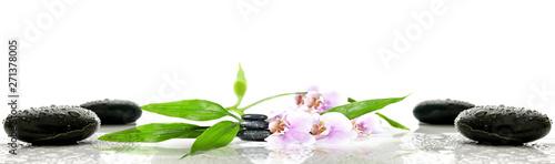 In de dag Orchidee Kwiaty na kamieniach | flower on stone