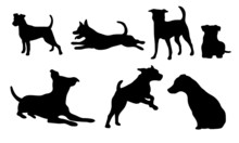 Jack Russel Terrier Icons