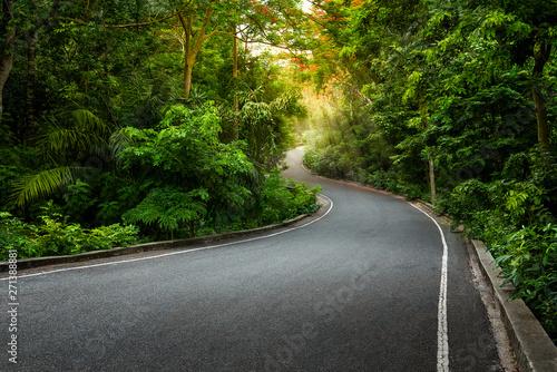 Fotobehang Bomen Single lane asphalt road pass through the forest