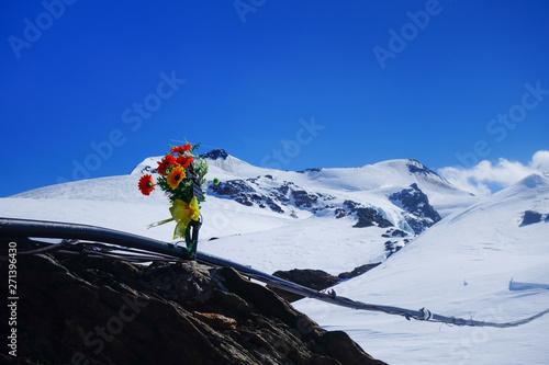 La pose en embrasure Bleu fonce Bouquet du sommet