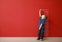 Little Boy Measuring Height Ne...