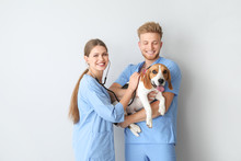 Veterinarians With Cute Dog On Light Background
